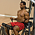 Body Solid Fusion 600 - Biceps Curl
