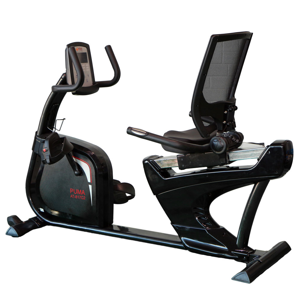 aBlaze Puma Commercial Recumbent Exercise Bike
