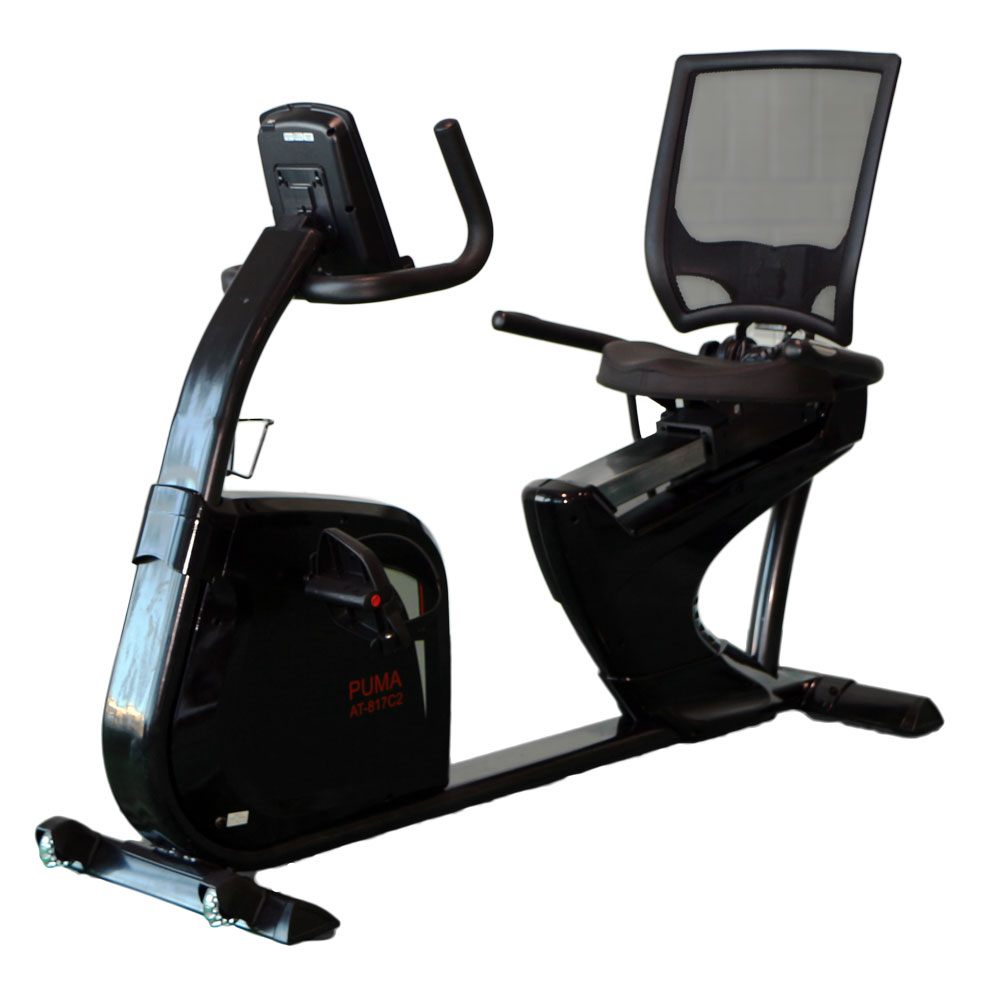 aBlaze Puma Recumbent Exercise Bike