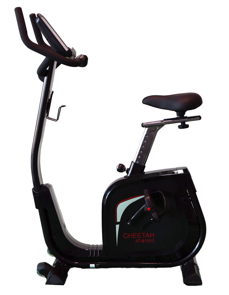 aBlaze Cheetah Exercise Bike