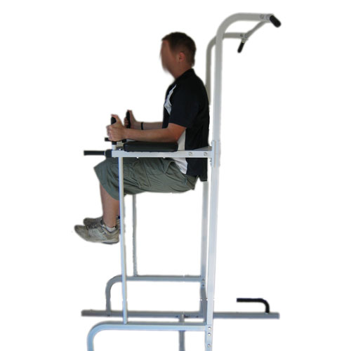 Aquila Power Tower - Vertical Knee Raise