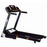 aBlaze Flume Treadmill