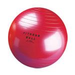 Commercial Grade Fitness Balls