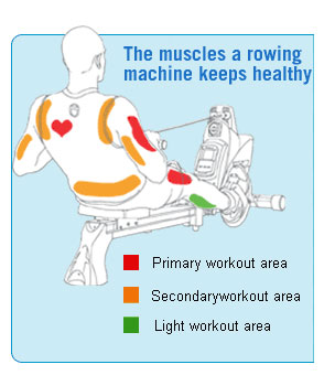 what are the benefits of a rowing machine